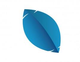 Blue Colored Mint leaf