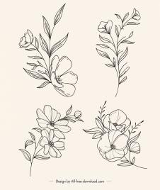 botany icons black white handdrawn outline