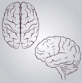 brain icons design monochrome sketch