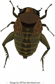 bug icon colored closeup modern design