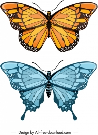 butterfly icons yellow blue decor modern design