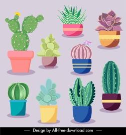 cacti flowerpot icons elegant colored classic flat sketch