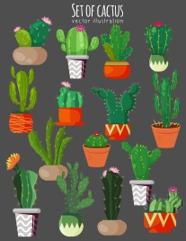 cactus icons collection colored flat classic sketch
