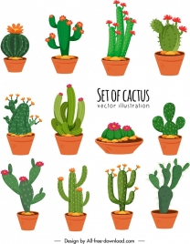 cactus icons collection colorful classical design