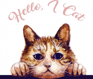 cat drawing cute face handdrawn sketch