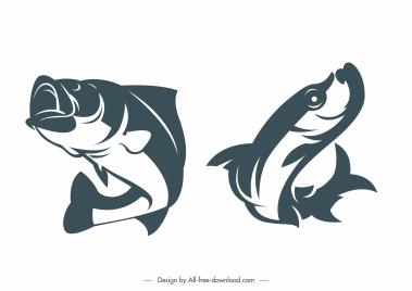 catfish species icons classic handdrawn dynamic design