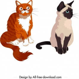 cats icons colored cartoon characters