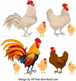 chicken icons colored cartoon design