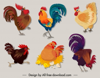 chicken icons colorful classic sketch