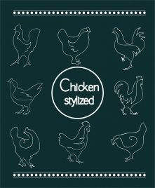 chicken stylized collection in sketch style
