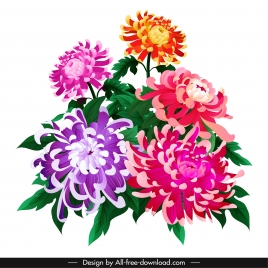 chrysanthemum flower painting colorful classical sketch