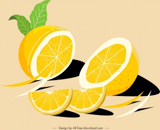 citrus fruits painting slices sketch colored classical handdrawn