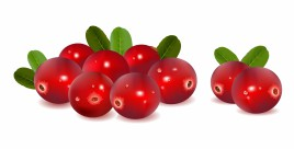 Cranberries with leaves
