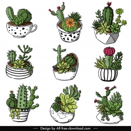 decorative cactus pot icons classical colorful handdrawn sketch
