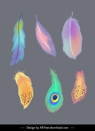 decorative feathers icons colorful retro handdrawn