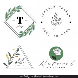 decorative logotype handdrawn plants sketch flat retro design