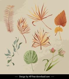 decorative nature elements retro leaf flowers sketch