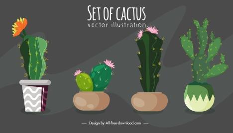 decorative plant background cactus pots sketch colorful classic