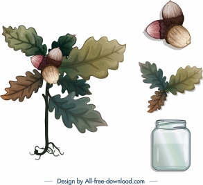 decorative plants icons leaf chestnut jar sketch