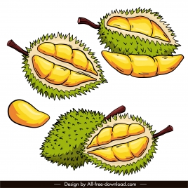 durian fruit icons retro handdrawn sketch