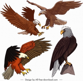 eagle icons flying perching gesture sketch