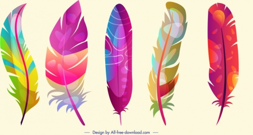 feathers background colorful vertical fluffy decor