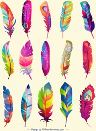 feathers icons collection multicolored decor fluffy vertical design