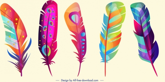 feathers icons colorful vertical design