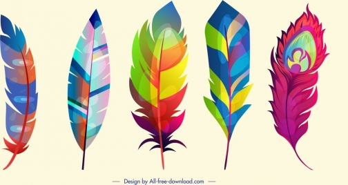 feathers icons multicolored design fluffy vertical sketch