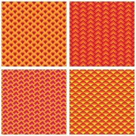 fin scale pattern
