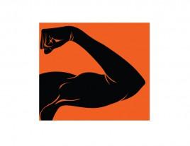 Fit Arm