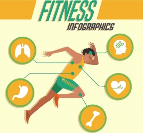 fitness infographics athlete icon organs silhouette decoration