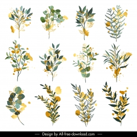 flora leaves icons colored classic sketch