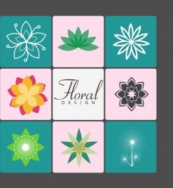 floral icons collection various sketches colorful isolation