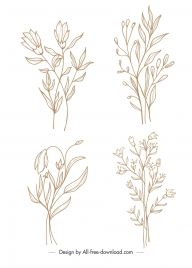 floral plants icons classical handdrawn sketch
