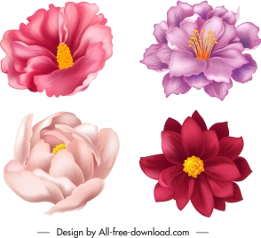 flower icons colored petals classical handdrawn 3d sketch