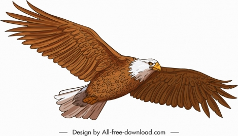 flying eagle icon straight wings sketch