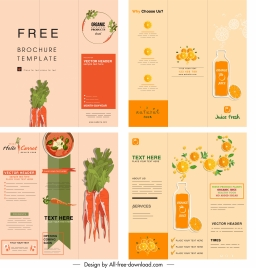 food brochure templates carrot orange themes colored classic