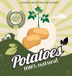 fresh potato advertising multicolored retro design