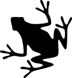 Frog Black Silhouette