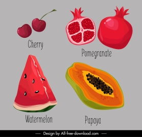 fruit icons colored classical handdrawn sketch