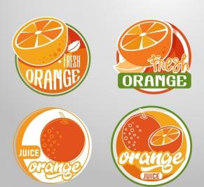 fruit logotypes orange icon circle design