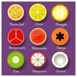 fruit slice collections