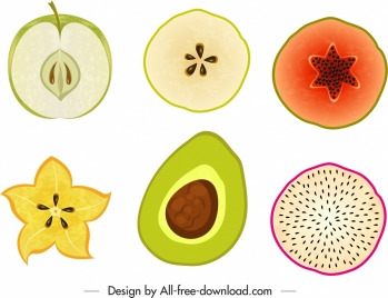 fruits design elements colorful flat slices handdrawn sketch