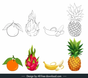 fruits icons black white colored handdrawn sketch