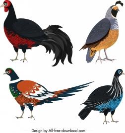 galliformes icons colored wild birds sketch