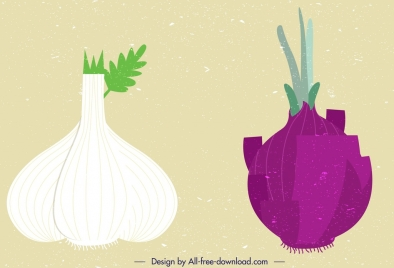 garlic onion vegetables icons colored flat retro design
