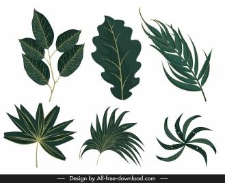 green leaf icons classic shapes design