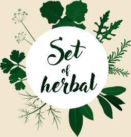 herbal background various green icons decoration