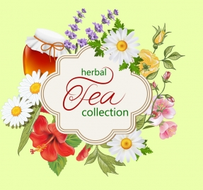 herbal tea background bright colorful flowers decoration